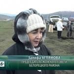 Акция по посадке деревьев в Азикеево