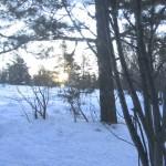 Башкирский уикэнд» в Южно-Уральском Государственном природном заповеднике.