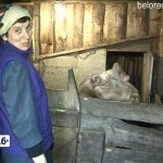 Фермеры Валентина и Валерий Потаповы