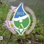 Год охраны окружающей среды