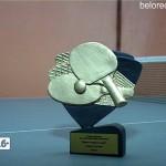 Теннисисты победители