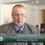 В Серменевском детдоме провели акцию «Выпускник! Знай свои трудовые права!»