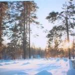 Выпуск новостей Белорецка от 13 декабря