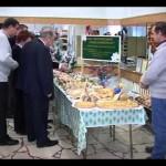 Выставка – продажа «Хлеб- всему голова», 2010 год