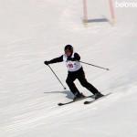 Этап Кубка РБ по горным лыжам среди ветеранов