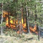 В Белорецком районе введен особый противопожарный режим