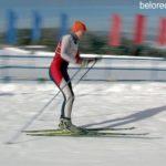 Соревнования на приз Серебренникова