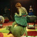 В Белорецке пройдут гастроли цирка шапито