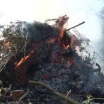 Сжигать мусор и сухую траву запрещено
