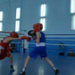 Новогодний турнир по боксу