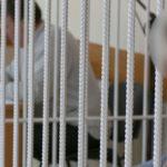 Осуждена за мошенничество при предоставлении юридических услуг