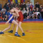 Новогодний турнир по греко-римской борьбе