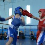 Новогодний боксерский турнир