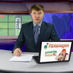 Новости Белорецка и хроника происшествий от 20 февраля. Полный выпуск