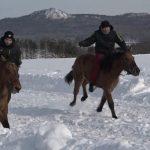 Олимпиада по деревенски или конно спортивный праздник
