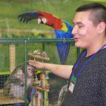 В Белорецк приехал контактный зоопарк «Джуманджи»