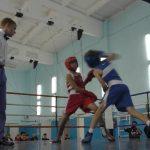 Открытое Первенство Белорецкого района по боксу
