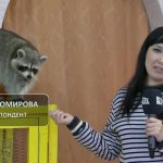 В Белорецк приехала «Зоовыставка рептилий и пушистиков»