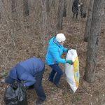 В Белорецке возобновлены уборки закрепленных территорий