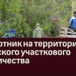 Субботник на территории Узянского участкового лесничества