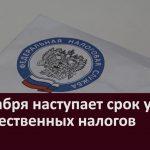 1 декабря наступает срок уплаты имущественных налогов