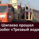 В селе Шигаево прошел автопробег «Трезвый водитель»