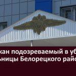 Задержан подозреваемый в убийстве жительницы Белорецкого района