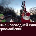 Открытие новогодней елки в п. Первомайский