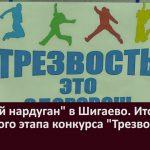 «Зимний нардуган» в Шигаево. Итоги районного этапа конкурса «Трезвое село»
