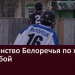 Первенство Белоречья по хоккею  с шайбой