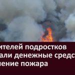 С родителей подростков взыскали денежные средства за тушение пожара