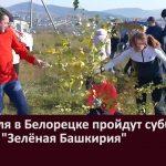 24 апреля в Белорецке пройдут субботники и акция «Зелёная Башкирия»