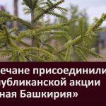 Белоречане присоединились к республиканской акции «Зеленая Башкирия»