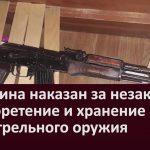 Мужчина наказан за незаконное приобретение и хранение огнестрельного оружия