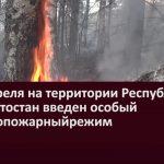 С 17 апреля на территории Республики Башкортостан введен особый противопожарный режим