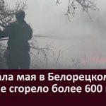С начала мая в Белорецком районе сгорело более 600 га леса