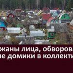 Задержаны лица обворовавшие дачные домики в коллективных садах