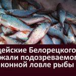 Полицейские Белорецкого района задержали подозреваемого в незаконной ловле рыбы