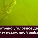 Рассмотрено уголовное дело по факту незаконной рыбалки