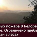 4 лесных пожара В Белорецком районе  Ограничено пребывание граждан в лесах