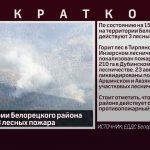 На территории Белорецкого района действуют 3 лесных пожара
