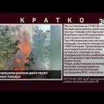 В Белорецком районе действуют 2 лесных пожара
