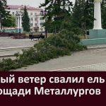 Сильный ветер свалил ель на площади Металлургов