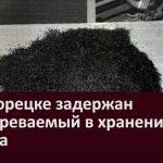 В Белорецке задержан подозреваемый в хранении пороха